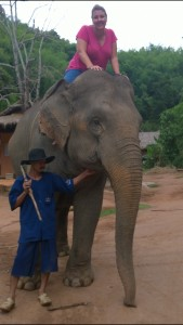 Anatara Golden Triangle elephant & mahout