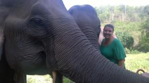 BEES elephants & me 2